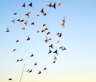 La confiance en soi, comment l'augmenter en 2010 ?